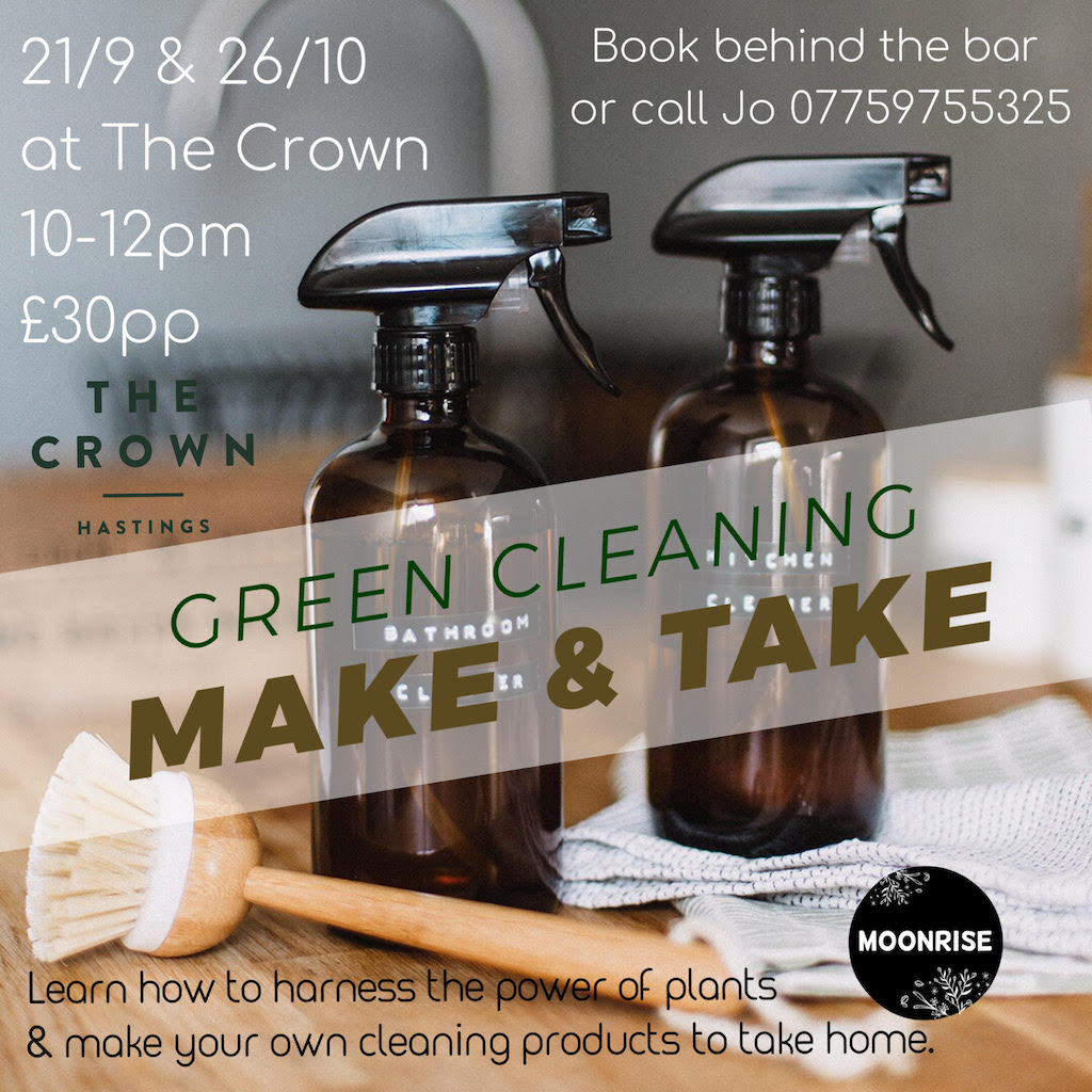 Poster for Green Cleaning: Make & Take